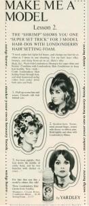 Jean Shrimpton 60s Hairdos-Yardley Londonderry