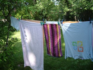 Backyard Clothesline in Spring