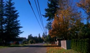 Finnfemme: Autumn Neighborhood Walk