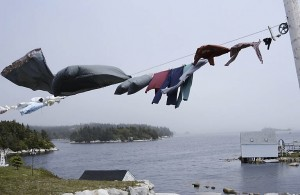 Windy clothesline