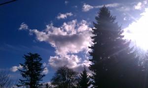 Clouds, Sun, Trees - Finnfemme