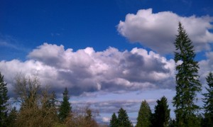 Clouds and Tree view - Finnfemme