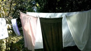 FINNFEMME: Clothesline in Late Summer